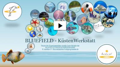 Teaser des Experimentellen Aurelia Lern-Modul BLUEFIELD - Küstenwerkstatt