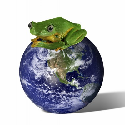 Aurelia e.V. Studienfachprogramme für Nachhaltigkeit