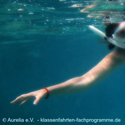 Erlebnispädagogisches Segeln, Schnorcheln und whalewatching in Kroatien. Auf' Schnorcheln im freuen sich die Schüler immer.