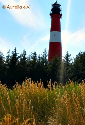 Leutturm im Ökosystem Nordsee Wattenmeer auf der Insel Sylt