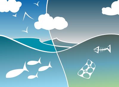 Gefahrt für die Welt: Plastkmüll im Meer