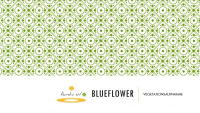 BLUEFLOWER -Vegetationsaufnahme - Lernmodul für Klassenfahrten