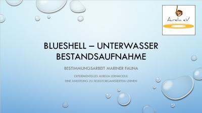 BLUESHELL - Unterwasser Bestandsaufnahme
