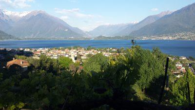 Comer See von oben mit Bergen im Hintergrund