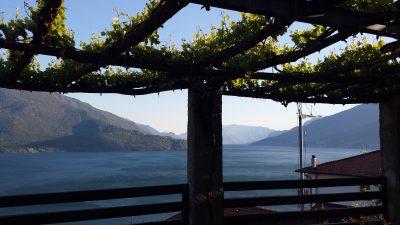 Weingut am Comer See - Italien