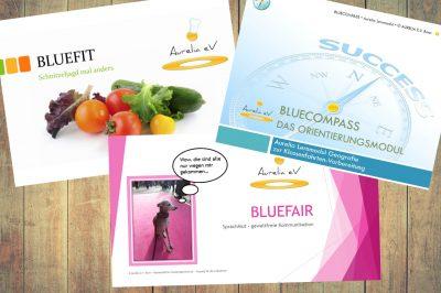Lernmodule BLUEFIT, BLUEFAIR, BLUECOMPASS