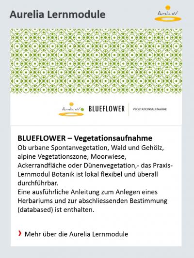 Aurelia Lernmodule BLUEFLOWER-Vegetationsaufnahme