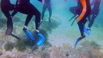 Schnorchel vor Sardinien - Klassenfahrt Meeresbiologe