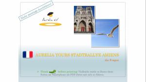 BLUECITY Stadtrallye Amiens - Frankreich (1)