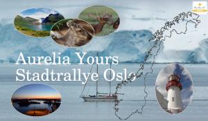 stadtrallye-oslo-klassenfahrten-programm-modul-aurelia-ev
